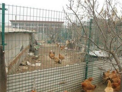 养殖隔离网